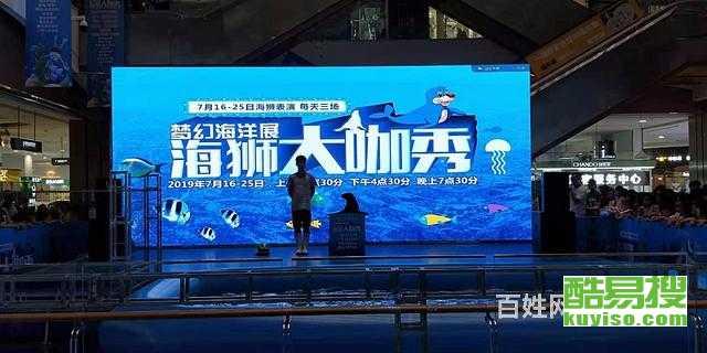 南京海洋生物展租賃,美人魚海獅企鵝表演出租